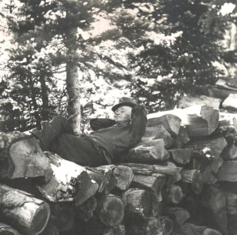 R.S. caught napping on pile of logs - probably my favorite